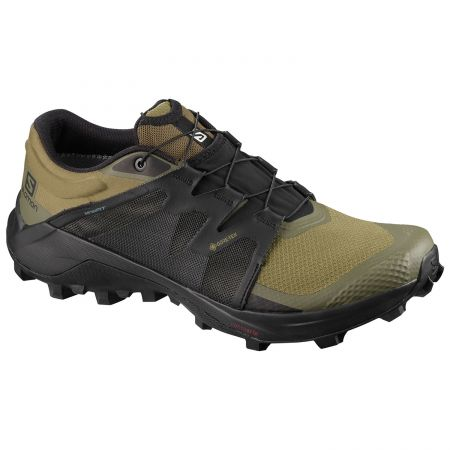 Salomon Wildcross GTX patike